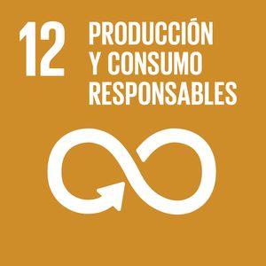 objetivo_desarrollo_sostenible_12_rivekids