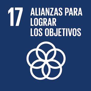 objetivo_desarrollo_sostenible_17_rivekids