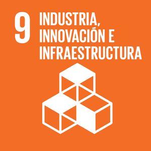objetivo_desarrollo_sostenible_9_rivekids