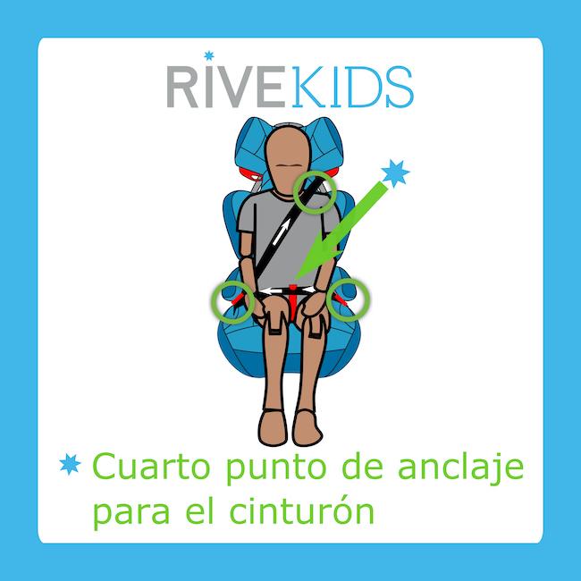 cuarto punto de anclaje cinturón rivekids