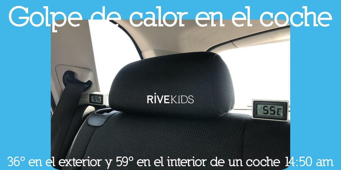 Golpe_calor_coche_59